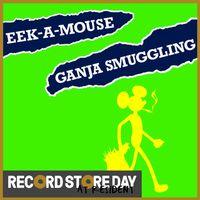 Ganja Smuggling  (RSD18)