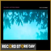 The Oaks (with Leftfield remix) (RSD18)