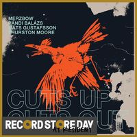 Cuts Up, Cuts Out (RSD18)