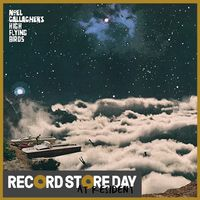 It's A Beautiful World (Andrew Weatherall / Mike Pickering & Graeme Park Remixes) (RSD18)
