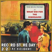 What Did For The Dinosaurs (rsd 20)