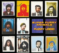fuzzy logic (2016 20th anniversary reissue)
