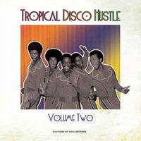Tropical Disco Hustle Volume 2