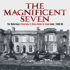 THE MAGNIFICENT SEVEN: The Waterboys Fisherman's Blues/Room To Roam band, 1989-90