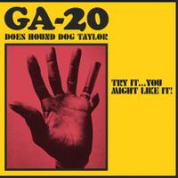 Does Hound Dog Taylor:Try It...You Might Like It!