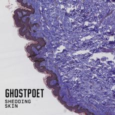 Shedding Skin (love record stores 2021)