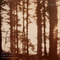 The Wind Is Strong - A Sparrow Dances, Piercing Holes in Our Sky (2021 reissue)
