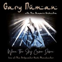 When the Sky Came Down (Live at The Bridgewater Hall, Manchester) (rsd 20)