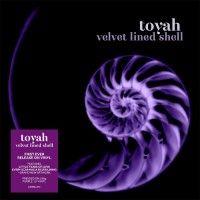 velvet lined shell  (2020 reissue)