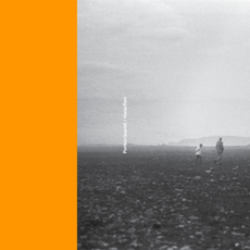 Nest (Portico Quartet Remix)/ With, Beside, Against (Hania Rani Remix)