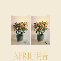 April / 月音