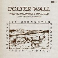 Western Swing & Waltzes andother Punchy Songs