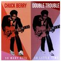 Double Trouble - So Many Hits So Little Time (2020 REISSUE)