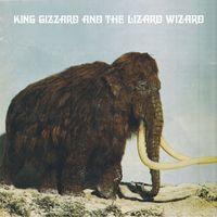 Polygondwanaland (Fuzz Club Version) (2020 reissue)