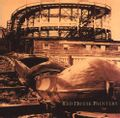 red house painters 1 / ROLLERCOASTER