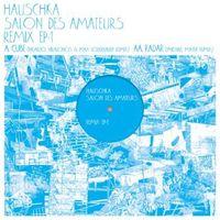 Salon Des Amateurs Remix EP1