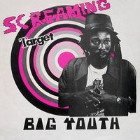 Screaming Target (2014 reissue)