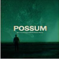 Possum (original soundtrack)