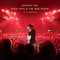 Distant Sky (Live In Copenhagen)