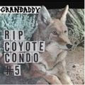 RIP Coyote Condo #5 b/w The Fox in the Snow and In My Room