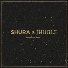Indecision (jungle remix)