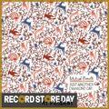 Just Another Diamond Day (Vashti Bunyan covers album) (rsd19)