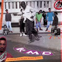 Mr. Hood: 30th Anniversary Edition (rsd 21)