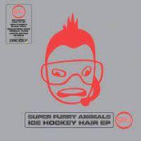 Ice Hockey Hair (rsd 21)