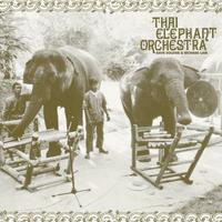 THAI ELEPHANT ORCHESTRA  (rsd 21)