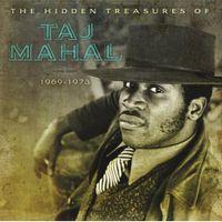 the hidden treasures of taj mahal 1969 - 1973
