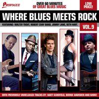 where blues meets rock vol. 9