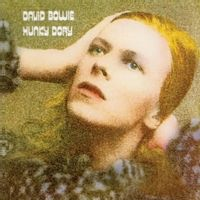hunky dory (2017 gold edition)